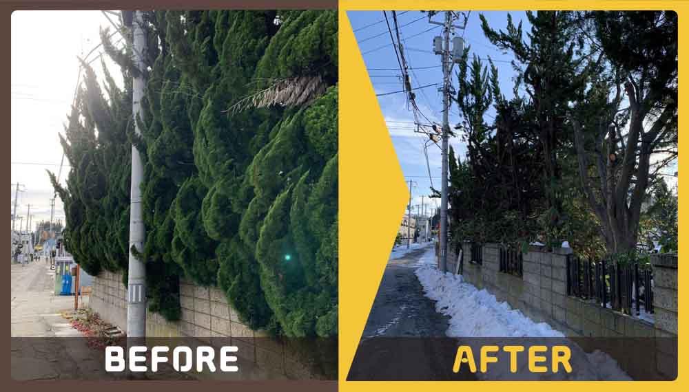 遺品整理と庭木によるご近所トラブルにお困りのお客様からご依頼いただきました。