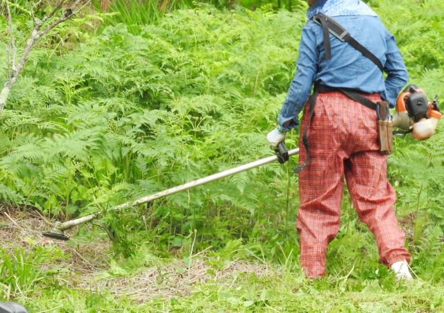 甲府市で草刈りにかかる料金相場は?追加料金や業者選びのコツまで解説