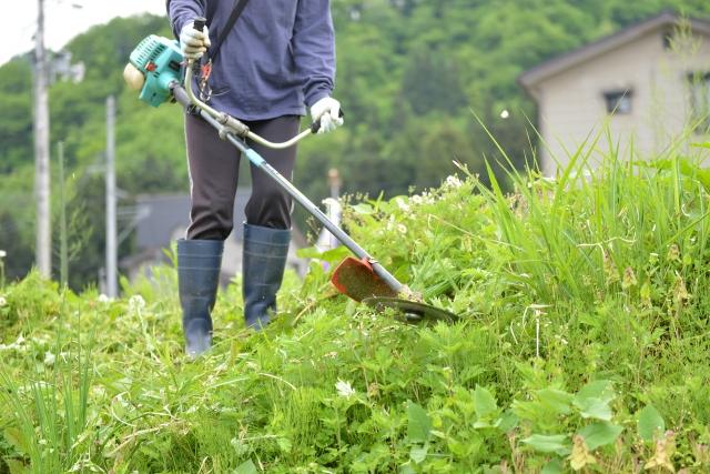大月市で草刈りに最適な年3回の時期~楽に草刈りを終えるコツまで徹底解説